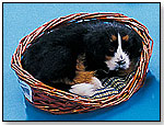 Dog in Bed by FURRY ANIMAL KINGDOM