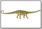 Diplodocus by SAFARI LTD.®