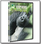 Saving a Species: Gorillas on the Brink by GENIUS PRODUCTS INC.