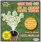 Grow Your Own Elm Tree by DUNECRAFT INC.