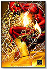 The Flash: Rebirth by DC COMICS
