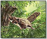 Flying Squirrel by FOLKMANIS INC.