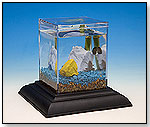 Classic Water Garden Starter Kit Eco-Aquarium by WILD CREATIONS