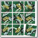 Manatees Scramble Squares® by b. dazzle, inc.