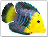 Rainbow Reef Fish by SWIMWAYS CORP