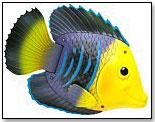 Rainbow Reef Fish by SWIMWAYS CORP