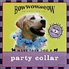 Make Your Dog a Party Collar by BOWWOWMEOW