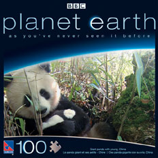 Planet Earth 100PC Jigsaw Puzzle