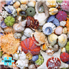 Seashore Puzzle by RE-MARKS INC.