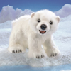 Polar Bear Cub by FOLKMANIS INC.