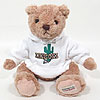 "13"" Teddy Bear w/ Arizona Sweatshirt by HERRINGTON TEDDY BEAR COMPANY"