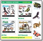 FormWild DVD - Birds by FORMWILD
