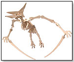 Wooden 3-D Puzzle – Pteranodon (small) by TOYSMITH