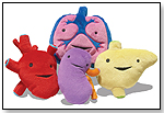 Plush Internal Organs Set - Heart, Lungs, Liver and Kidney by I HEART GUTS