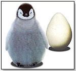 Wild Creations™ Science & Nature™ - Shuffling Penguin by WILD CREATIONS