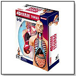4D Vision Anatomy Kits by TEDCO INC.