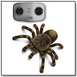 Science & Nature Radio-Controlled Tarantula by WILD CREATIONS