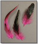 Feather Hair Accessories by MIDWEST DESIGN IMPORTS INC.