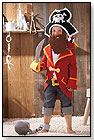 Captain Charlie Pirate Costume by HABA USA/HABERMAASS CORP.