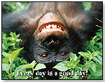 Every Day is a Good Day Poster by BARKER CREEK PUBLISHING