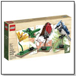 LEGO Ideas 21301 Birds Model Kit by LEGO